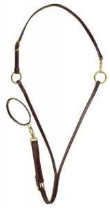 Martingale with Neck Strap