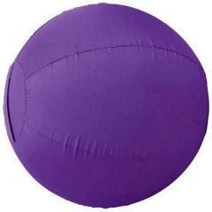 Stacy Westfall Activity Ball Cover
